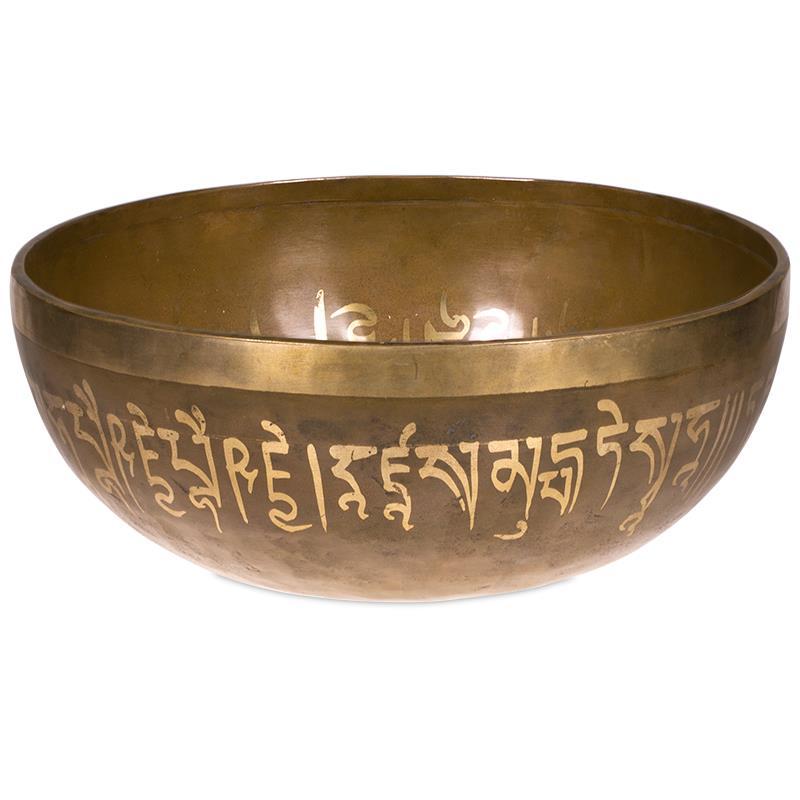 Buddhova medicína